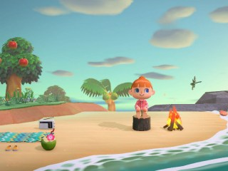 Animal Crossing: New Horizons Video Game
